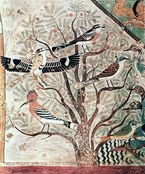birds-in-an-acacia-tree-wall-painting-from-tomb-of-khnumhotep-iii-beni-hasan-middle-kingdom.jpg